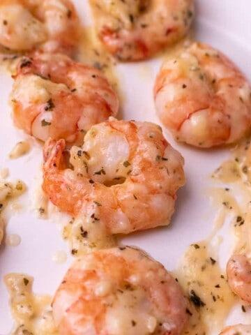 Close up of garlic parm shrimp on a white plate